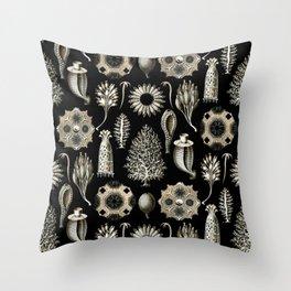 Ernst Haeckel - Scientific Illustration - Calcispongiae Throw Pillow