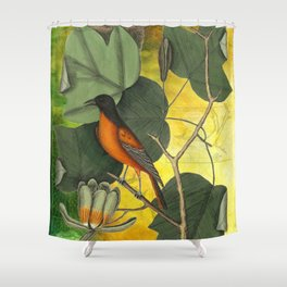 Baltimore Oriole on Tulip Tree, Vintage Natural History and Botanical Shower Curtain
