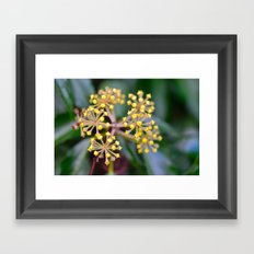 Wild Ivy Framed Art Print