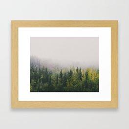 Trees in the fog Framed Art Print