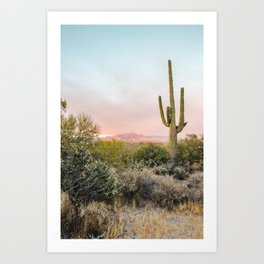 Desert Mountains Saguaro Cactus Blue & Pink Sunset Phoenix Arizona Art Print