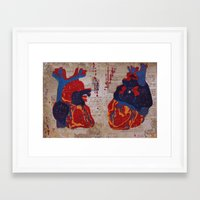 anatomical heart Framed Art Prints featuring Anatomical Heart by LatteLover