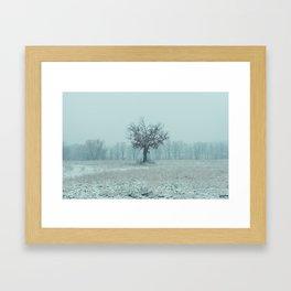 Union Winter 1 Framed Art Print