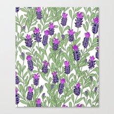 April blooms(lavender) Canvas Print