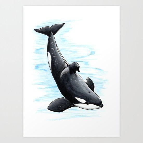 Bingo - Draw Every Captive Orca Project nr. 2 by dutchorca