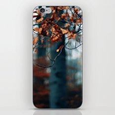 Hibernation iPhone & iPod Skin