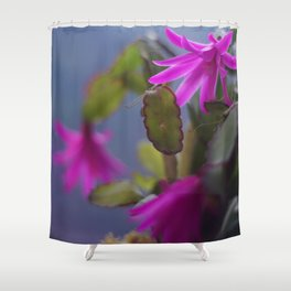 Magenta Blooming Cactus Shower Curtain
