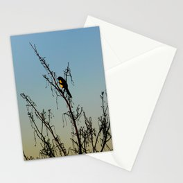 Evening song bird at sunset Stationery Cards