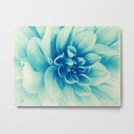 Blue Beauty (Spring Blooming Dahlia) Metal Print