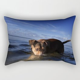 Paws Playing Jaws. Rectangular Pillow