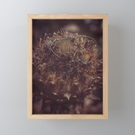 Dead Flower Framed Mini Art Print