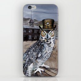 The Owl and the Schoolhouse iPhone Skin
