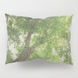 Green Tree Pillow Sham