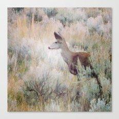 Sage Deer Canvas Print