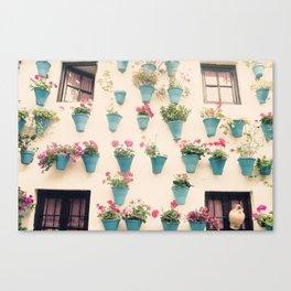 Flowerpots Canvas Print