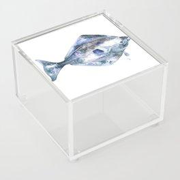 Flat Fish Watercolor Acrylic Box