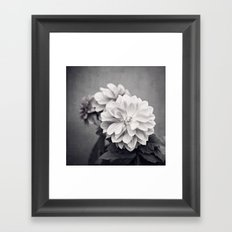 Black and White Dahlia Flower Photography, Grey Floral, Gray Neutral Nature Petals Framed Art Print