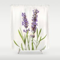 lavender Shower Curtains featuring Lavender by 83 Oranges™