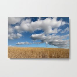 A dramatic Cloudy Sky over a Golden Field Metal Print