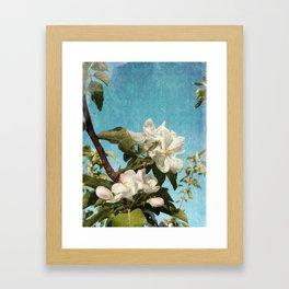 French Blossoms Framed Art Print