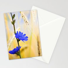 Periwinkle Stationery Cards