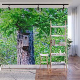 Old Bird House On A Large Larch Tree In Spring. Fresh Green Leaves And Needles Wall Mural