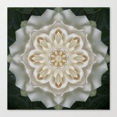 Inner Gardenia Glow Canvas Print