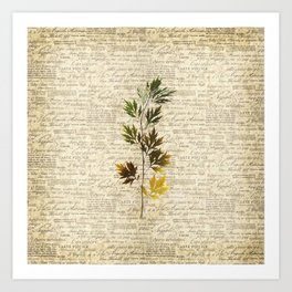 leaves. floral picture for home decor. Abstract Art. Wall art decorative 6 Art Print
