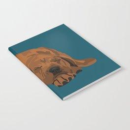 Silas Notebook
