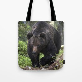 King of forest, male brown bear approaching Tote Bag