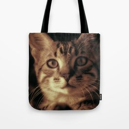 Kitten In The Window Tote Bag