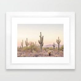 Arizona Desert Framed Art Print