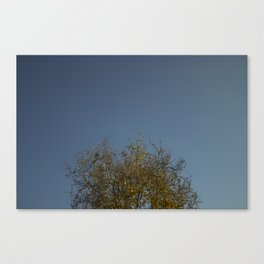 Fall in the Suburbs Canvas Print
