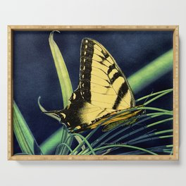 Yellow Tiger Swallowtail Butterfly A125 Serving Tray