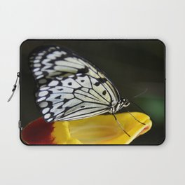 Tree Nymph Butterfly Laptop Sleeve