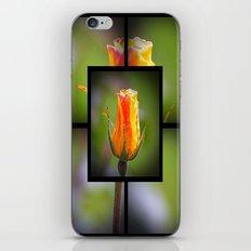 Rose bud iPhone & iPod Skin