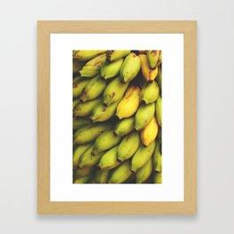Ripening  Framed Art Print