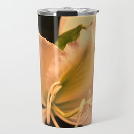 Bauhinia in golden light Travel Mug