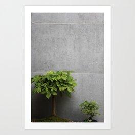 Growth plants Art Print
