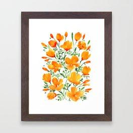 Watercolor California poppies Framed Art Print