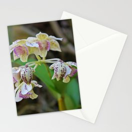 On a Day Like This Stationery Cards