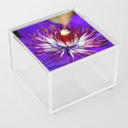 Clematis Acrylic Box