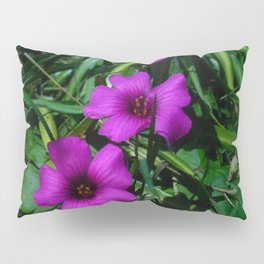 Purple Magic Pillow Sham