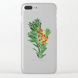 Beautiful Australian Native Bottlebrush Flower Clear iPhone Case