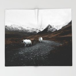 SHEEP - MOUNTAINS - SNOW - ROAD - PHOTOGRAPHY - FUNNY Throw Blanket