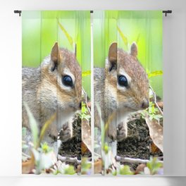 Watercolor Eastern Chipmunk 02, Cabin Critter Blackout Curtain