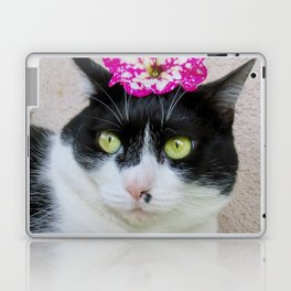 Khoshek sweet kittycat Laptop & iPad Skin