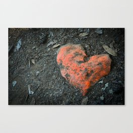 Finding Love Canvas Print