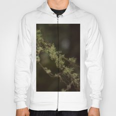 Branches Hoody