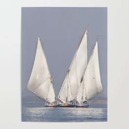 Gliding on the Nile Poster